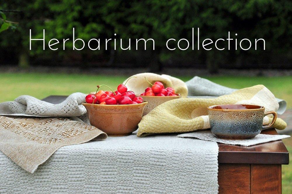 cottongrass_herbarium.jpg.433789bcade61b0403e559d01552f216.jpg