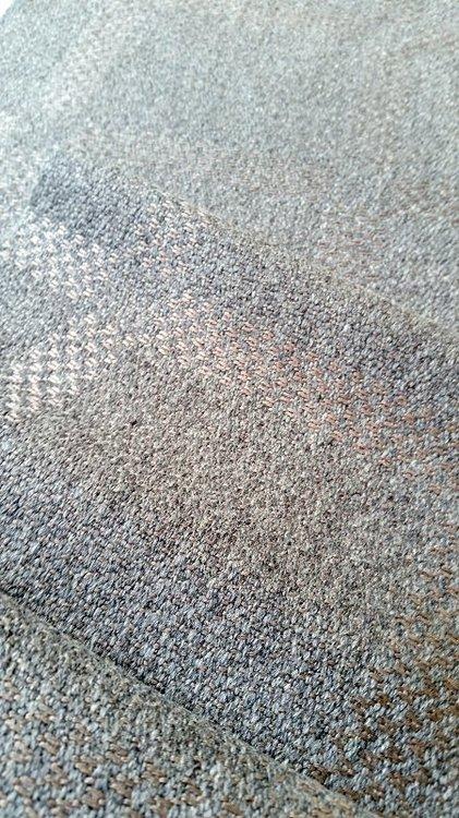 cottongrass_silvergrey.thumb.jpg.d002912eae1bc84c09d587e446a56c2b.jpg